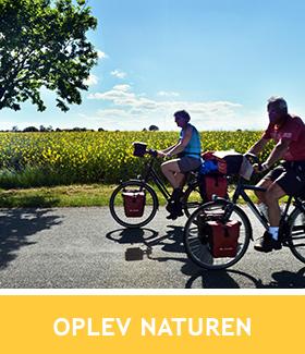 Cyklister og link til Oplev Naturen på norddjurs.dk