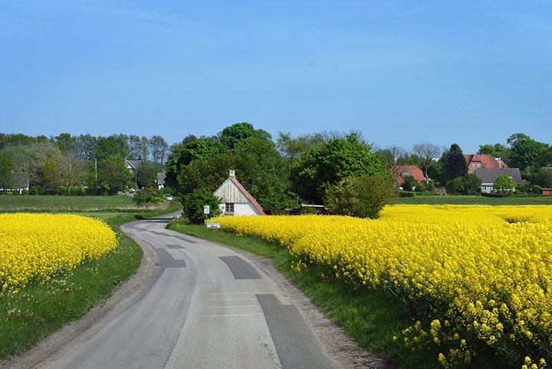 Udsigt over marker og huse ved Kolindsund