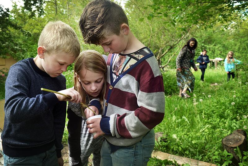 Skoleklasse er i naturen