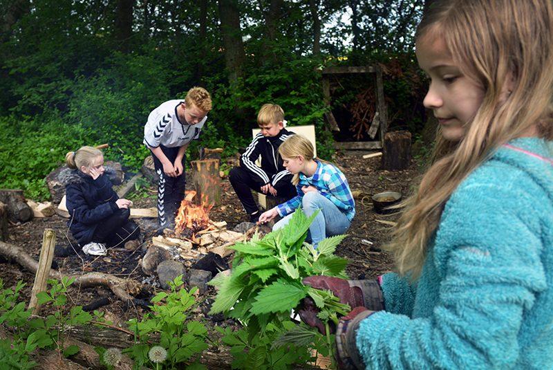 Børn omkring bålsted i naturen