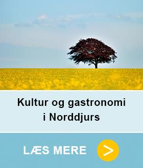 Link til kultur og gastronomi i Norddjurs